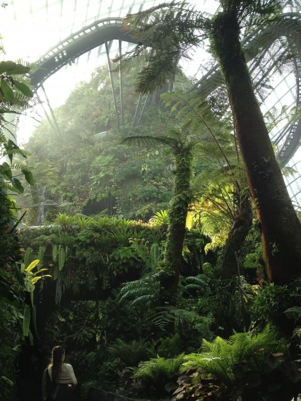 アジアツアー2015 シンガポール 植物園