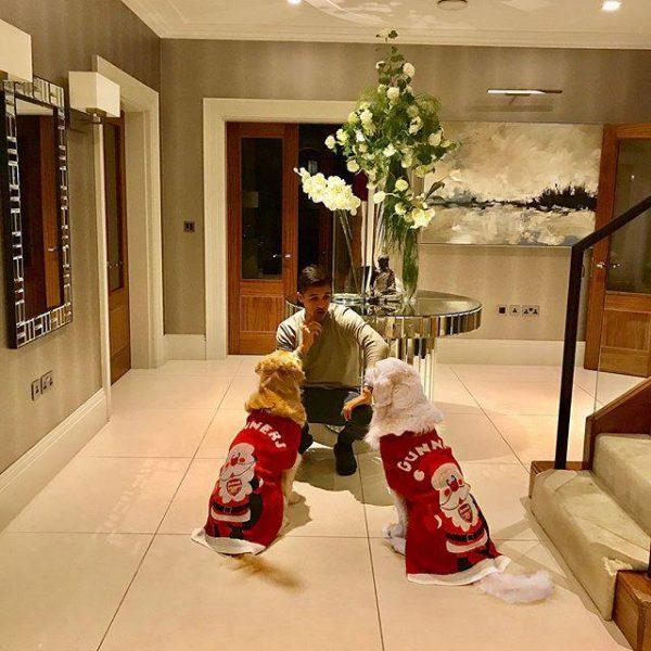 アレクシス・サンチェス 犬 クリスマスジャンパー