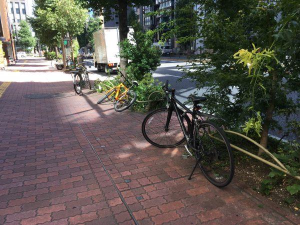 一時帰国日誌18-19 自転車