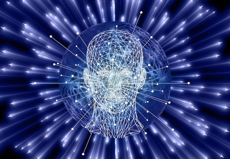 第六感 脳